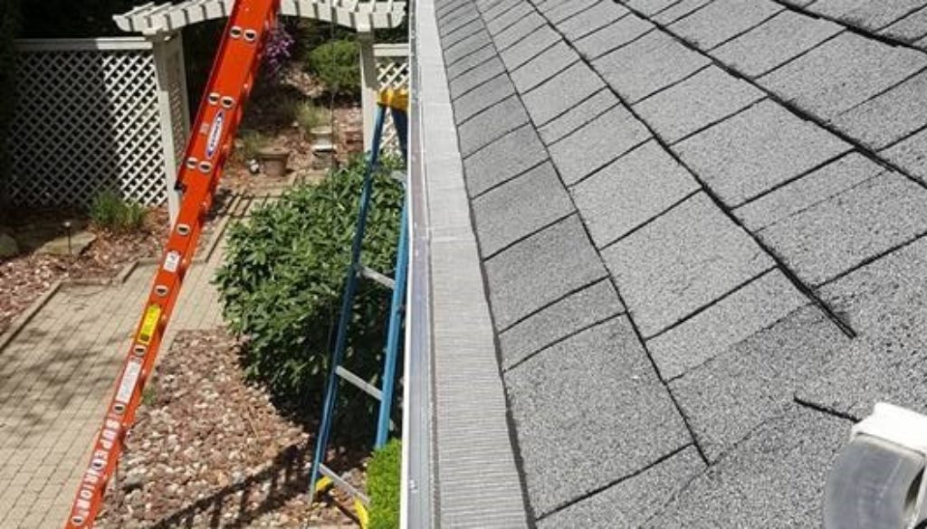 professional gutter services
