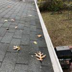 leafguards